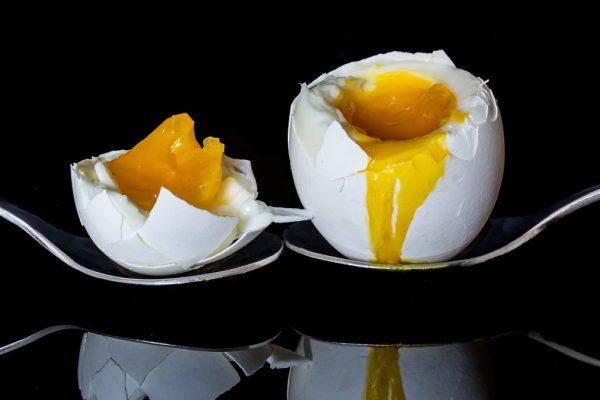 eat several eggs