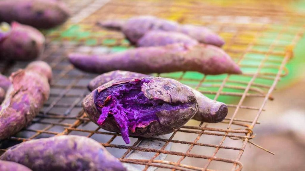 properties of purple sweet potato